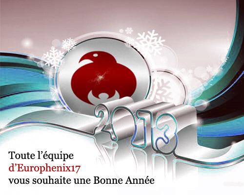 Bonne Année 2013 ! 1