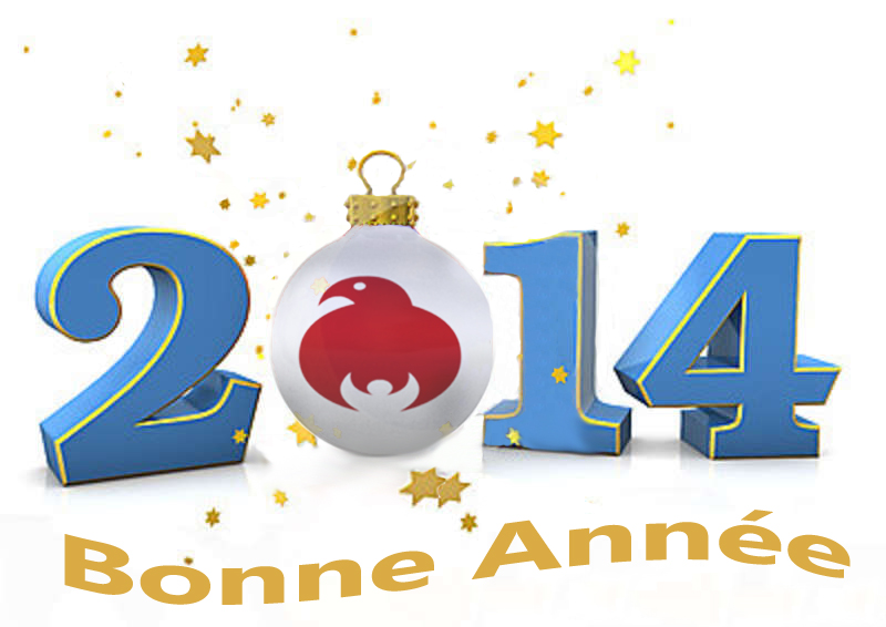 Happy new year skydive royan France